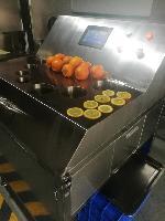 厂家供应高速橙子切片机,橙子加工设备