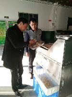 厂家供应高速竹笋切片机,毛笋加工设备