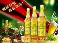 白啤酒代理/安徽/江苏/贵州/啤酒加盟代理