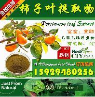 厂家直销:柿子叶提取物 20:1 柿叶提取物 现货供应