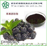 巴西莓粉  巴西莓提取物  巴西梅果汁粉   厂家现货直销