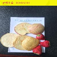 新疆野生蓝莓冻干机新鲜蓝莓真空冷冻干燥机