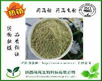 茼蒿粉 99% 茼蒿生粉  天然果蔬粉 有机茼蒿 植体厂家直销