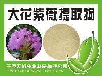 厂家供应科罗索酸5% 巴拿巴大花紫薇提取物
