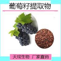 葡萄籽提取物粉的价格