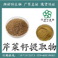 芹菜籽提取物10:1 芹菜籽速溶粉 芹菜籽浓缩汁