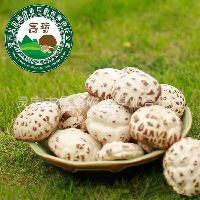 昌盛宝菇 精品厚白干花菇500g 手挑好货精品礼盒装送礼厂家直销