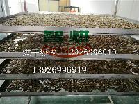 供应性能稳定野生石斛烘干机专业技术高