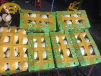 满意水果代销公司各种水果代销批发代卖配送