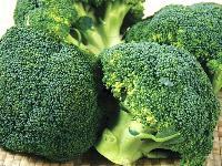 宏鸿农产品蔬菜食材配送一站式采购配送食堂配送服务 西兰花